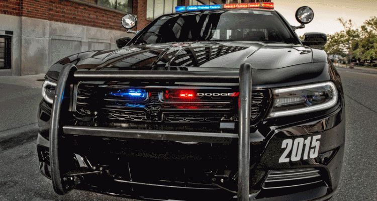 2015 CHARGER PURSUIT GIF