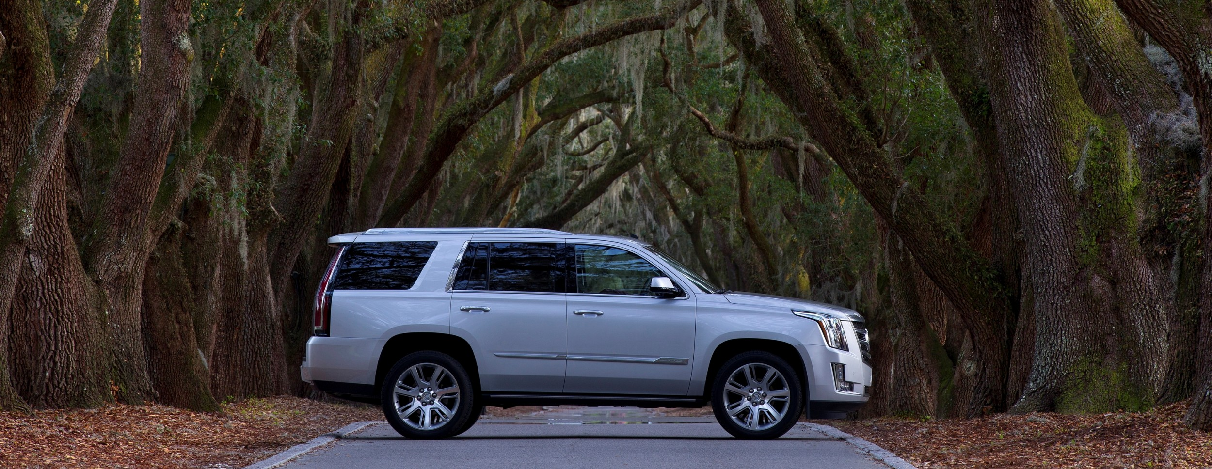 Sound Ford Renton >> Is Escalade Body Changing In 2014 | Upcomingcarshq.com
