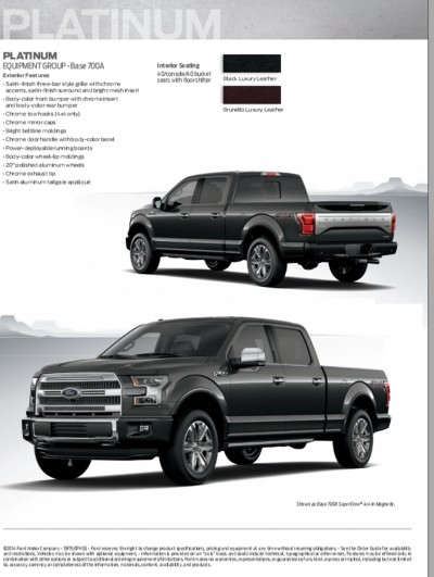 2015 FORD F-150 31