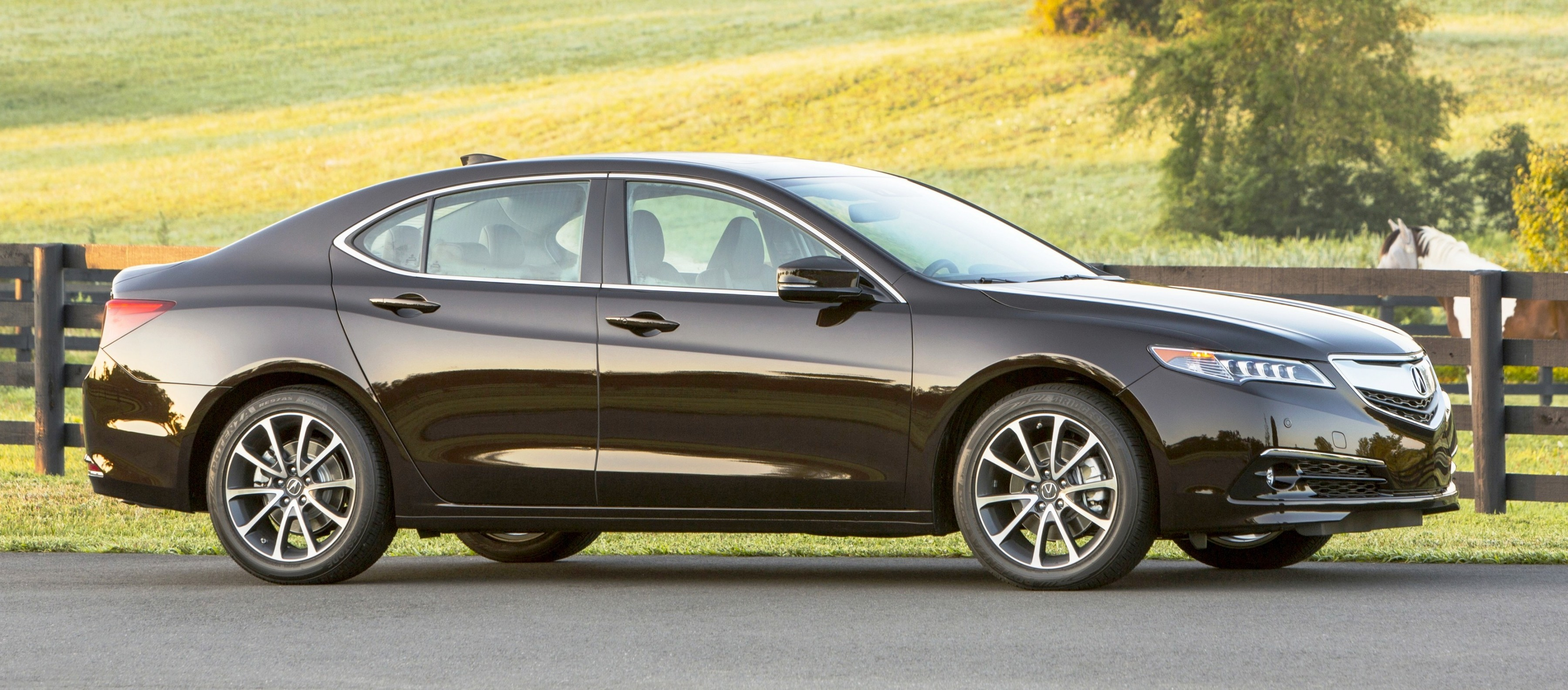 2015 acura tlx media launch brings 100 new photos pricing colors and specs 31k base price. Black Bedroom Furniture Sets. Home Design Ideas
