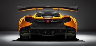 2016 McLaren 650S GT3 8