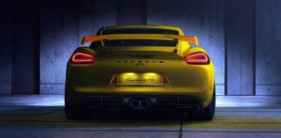 2016 Porsche CAYMAN GT4 37