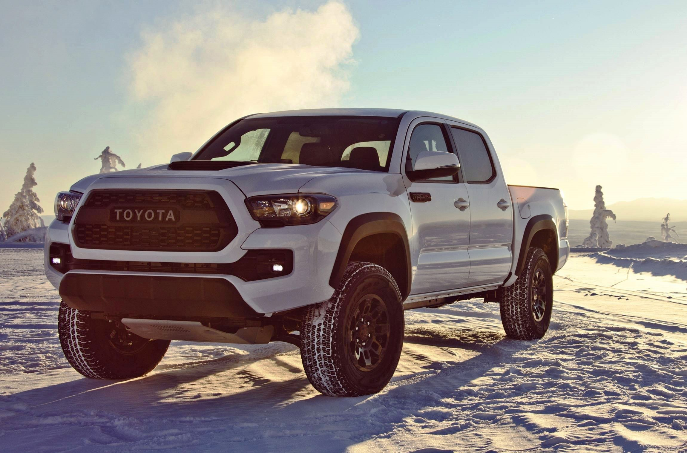 2017 toyota tacoma trd pro kevlar reinforced tires rigid industries leds and black dipped. Black Bedroom Furniture Sets. Home Design Ideas