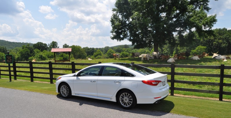 Car-Revs-Daily.com 2015 HYUNDAI SONATA LIMITED REVIEW 124