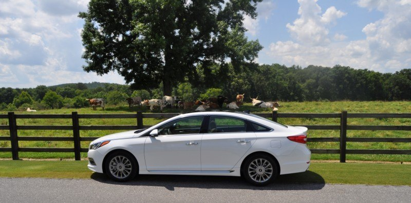 Car-Revs-Daily.com 2015 HYUNDAI SONATA LIMITED REVIEW 125