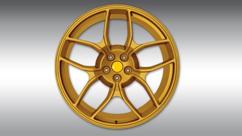 F445868_NF4_gold_l800x450