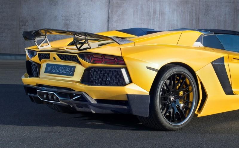 HAMANN Lamborghini Aventador Roadster 15