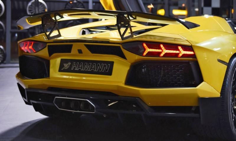 HAMANN Lamborghini Aventador Roadster 9