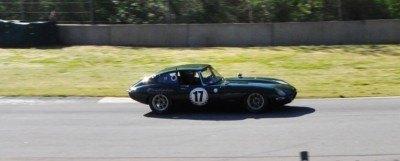 Mitty 2014 Vintage Sportscars at Road Atlanta - 300-Photo Mega Gallery 118