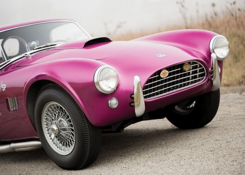 RM Arizona 2016 - 1963 Shelby 289 Cobra DRAGONSNAKE  11