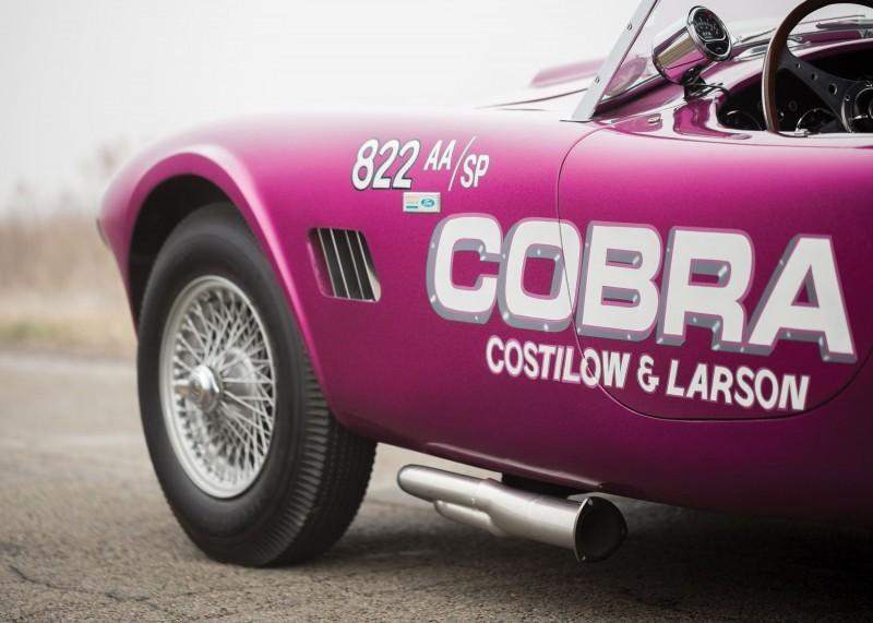RM Arizona 2016 - 1963 Shelby 289 Cobra DRAGONSNAKE  8